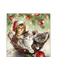 Napkins 25x25 cm - Cats In Basket