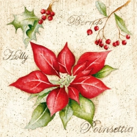 Serviettes lunch Poinsettia