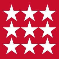 Lunch napkins STARS NEG. RED