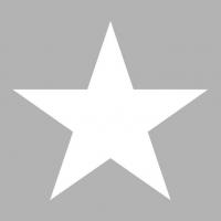 Napkins 33x33 cm - Star Silver