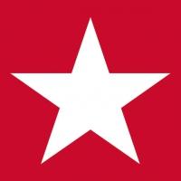Napkins 33x33 cm - Star Red