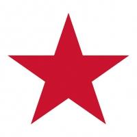 Servietten 33x33 cm - Stern Weiß/Rot