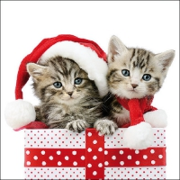Serviettes lunch Christmas Kitten