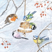 Serviettes lunch Winter Birds