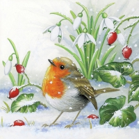 Lunch napkins Robin