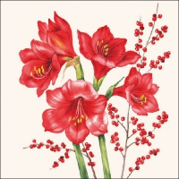 Lunch napkins Amaryllis