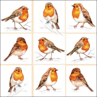 Lunch napkins Robins Family