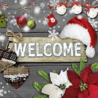 Serviettes lunch Welcome Santa Grey
