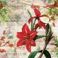 Servilletas Lunch Red Amaryllis