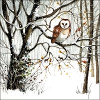 Lunch napkins Winter Owl