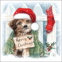 Napkins 33x33 cm - Christmas Puppy