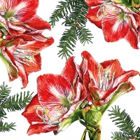 Lunch napkins Painted Amaryllis