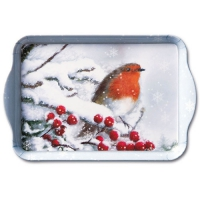 Tray Robin In Snow