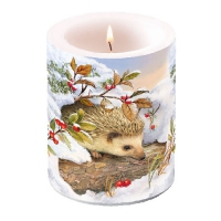 Candles Hedgehog In Snow