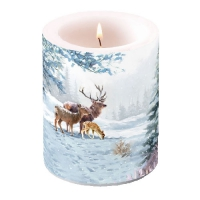 Candles Deer Family