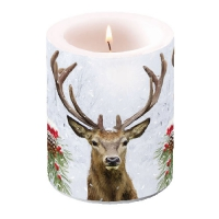 Candles Deer In Winter