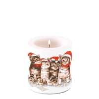 Candles small Singing Cats