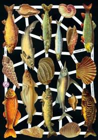 Glanzbilder mit Glimmer Muschel&Fische