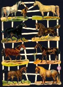 Glanzbilder Pferde II,Jugendtraum