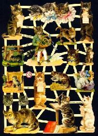Glanzbilder musizierende Katzen