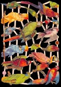 Glanzbilder Vögel,Jugendtraum