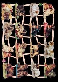 Glanzbilder Hunde
