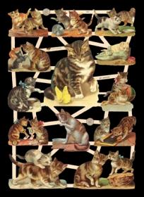 Scrap reliefs avec le mica Katzen