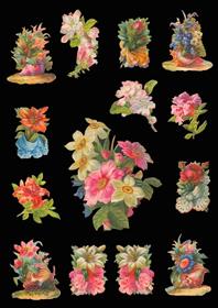 Ganzbilder - lose Blumen