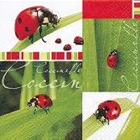 Lunch napkins Coccinelle