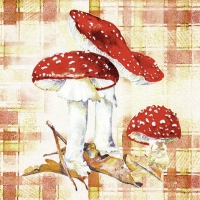 Serviettes lunch Toad Stool