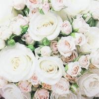 Lunch Servietten Romantic Roses
