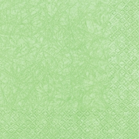 Serviettes lunch Modern Colours pastel green