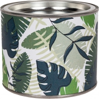scanted candles Tropical Leaves