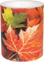 Dekorkerze Maple Leaves