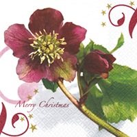 Lunch Servietten Christmas Rose