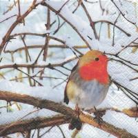 Lunch Servietten Robin in a Winter Tree