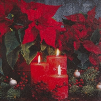 Serviettes lunch Candlelight Poinsettia