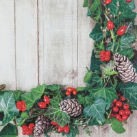 Lunch napkins Ivy Wreath