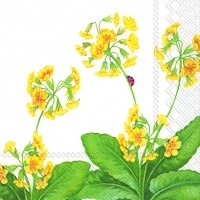 Serviettes de table 25x25 cm - PRIMULA VERIS