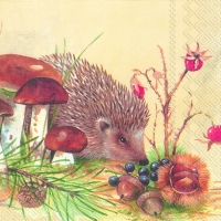 Serviettes cocktail  NOSY LITTLE HEDGEHOG