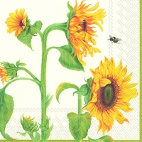 Cocktail napkins HELIANTHUS ANNUUS cream