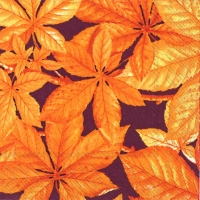 Cocktail napkins CHESTNUT FOLIAGE brown