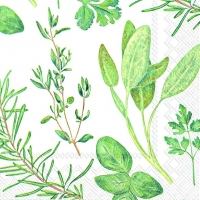 Cocktail napkins HERBS