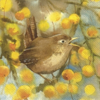 Cocktail napkins WREN AND BRANCHES