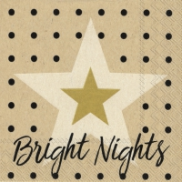 Napkins 25x25 cm - bright nights