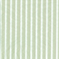 Napkins 33x33 cm - STRIPES AGAIN linen