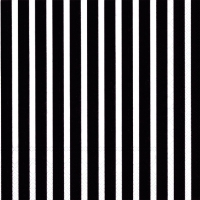 Napkins 33x33 cm - STRIPES AGAIN black white