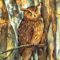 Lunch Servietten FOREST OWL