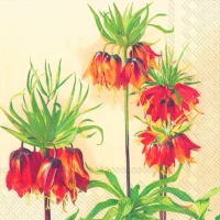 Lunch Servietten FRITILLARIA IMPERIALIS