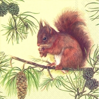 Lunch napkins HUNGRY SQUIRREL